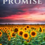 The Promise: Cover Reveal